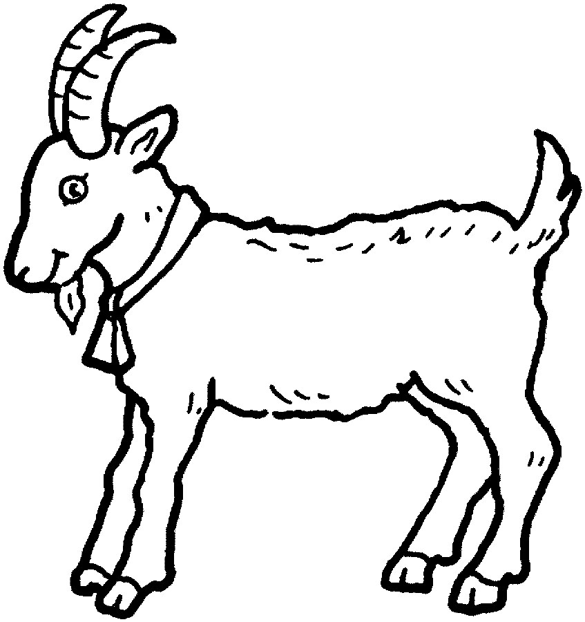 coloring picture of a goat top 25 free printable goat coloring pages online coloring picture a goat of