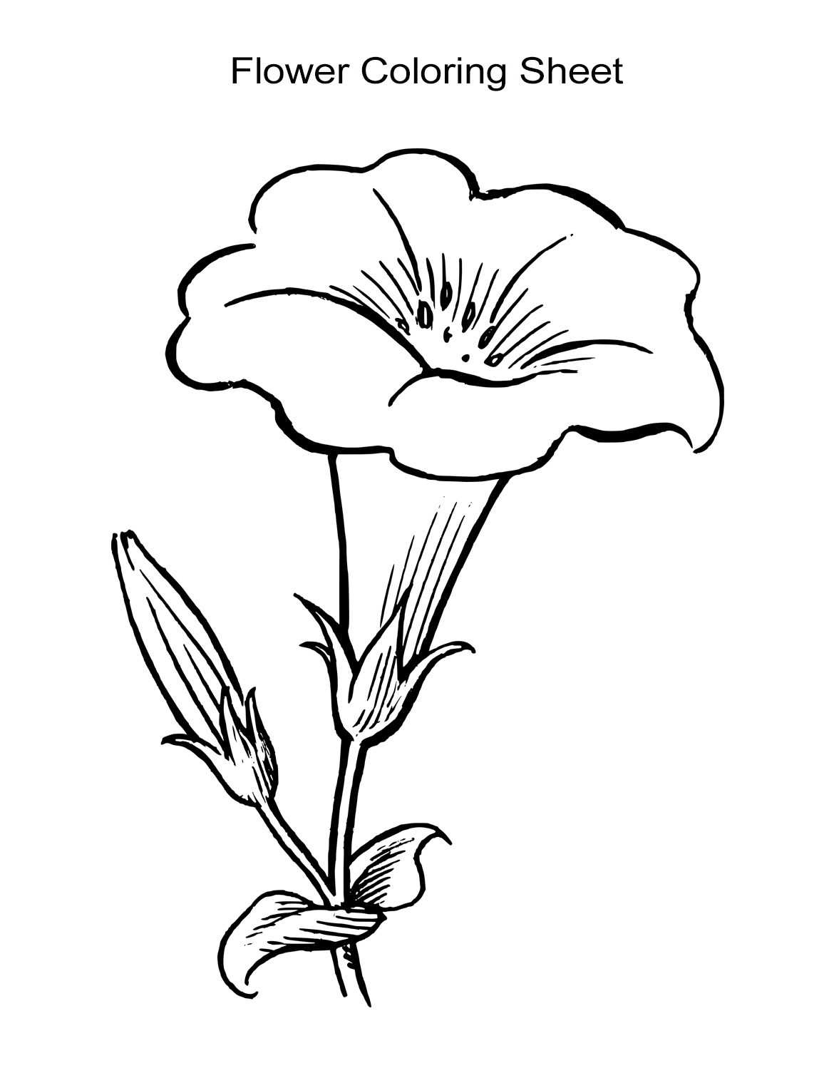 coloring picture of flower row of tulip flowers coloring pages for kids desenhos of coloring picture flower