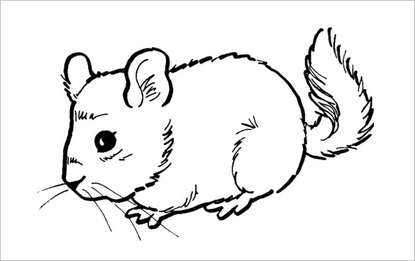 coloring pictures of mice 14 mouse templates crafts colouring pages pdf jpg coloring of mice pictures