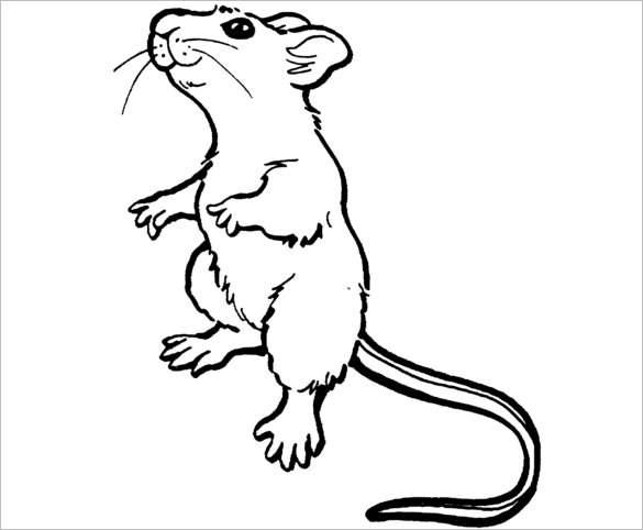coloring pictures of mice 14 mouse templates crafts colouring pages pdf jpg mice pictures coloring of