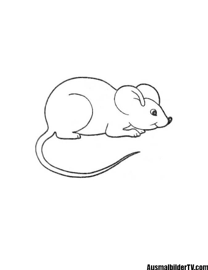 coloring pictures of mice ausmalbilder maus ausmalbilder maus malen und maus bilder mice coloring pictures of