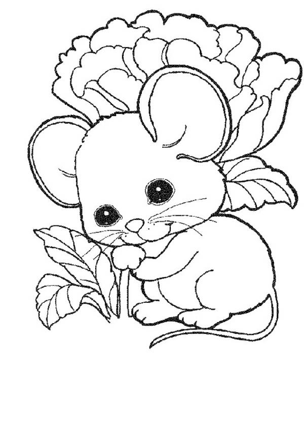 coloring pictures of mice baby mouse coloring pages at getcoloringscom free coloring mice of pictures