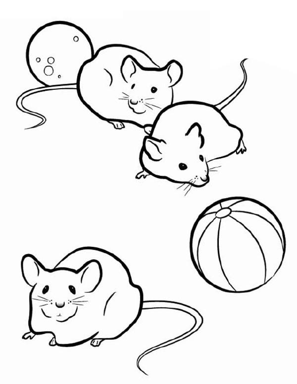 coloring pictures of mice free printable mouse coloring pages for kids mice coloring of pictures