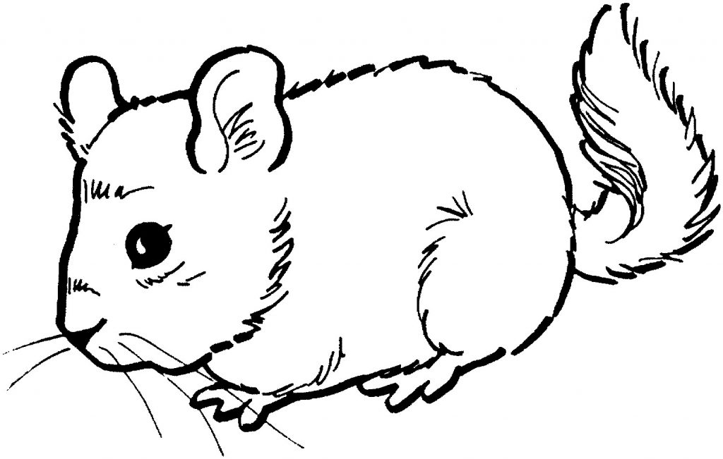coloring pictures of mice free printable mouse coloring pages for kids mice of pictures coloring