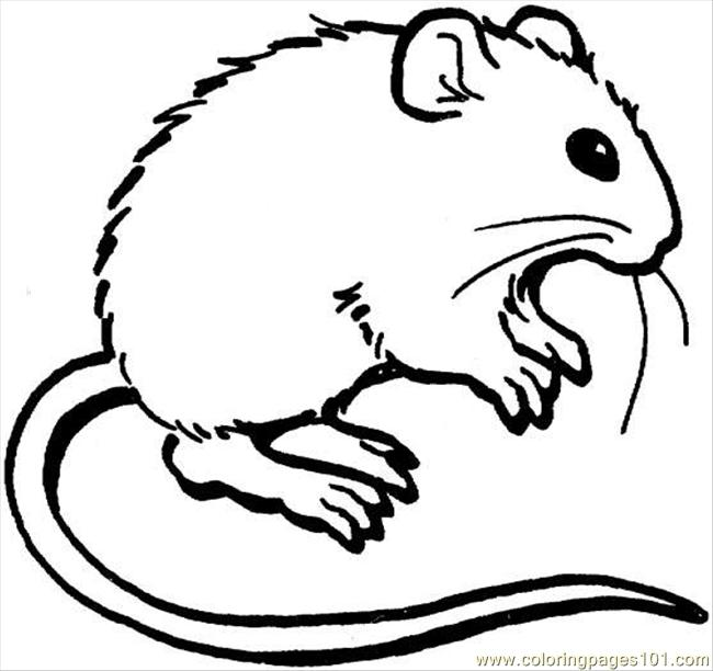 coloring pictures of mice mouse 3 coloring page coloring page free mouse coloring of mice pictures coloring