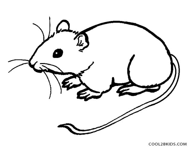 coloring pictures of mice mouse coloring pages surfnetkids coloring mice pictures of