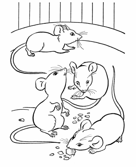 coloring pictures of mice tino robot ottobre 2011 coloring of mice pictures