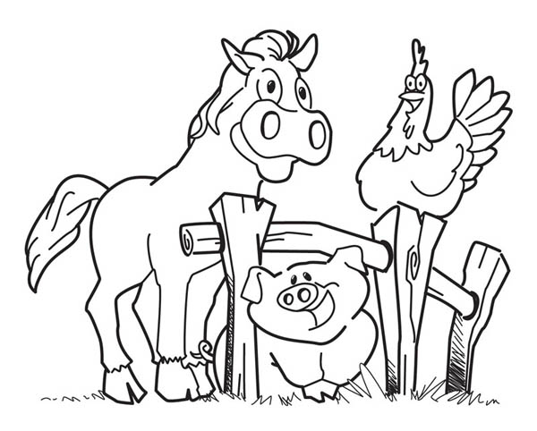 coloring sheets farm animals farm animals coloring page sheets farm animals coloring
