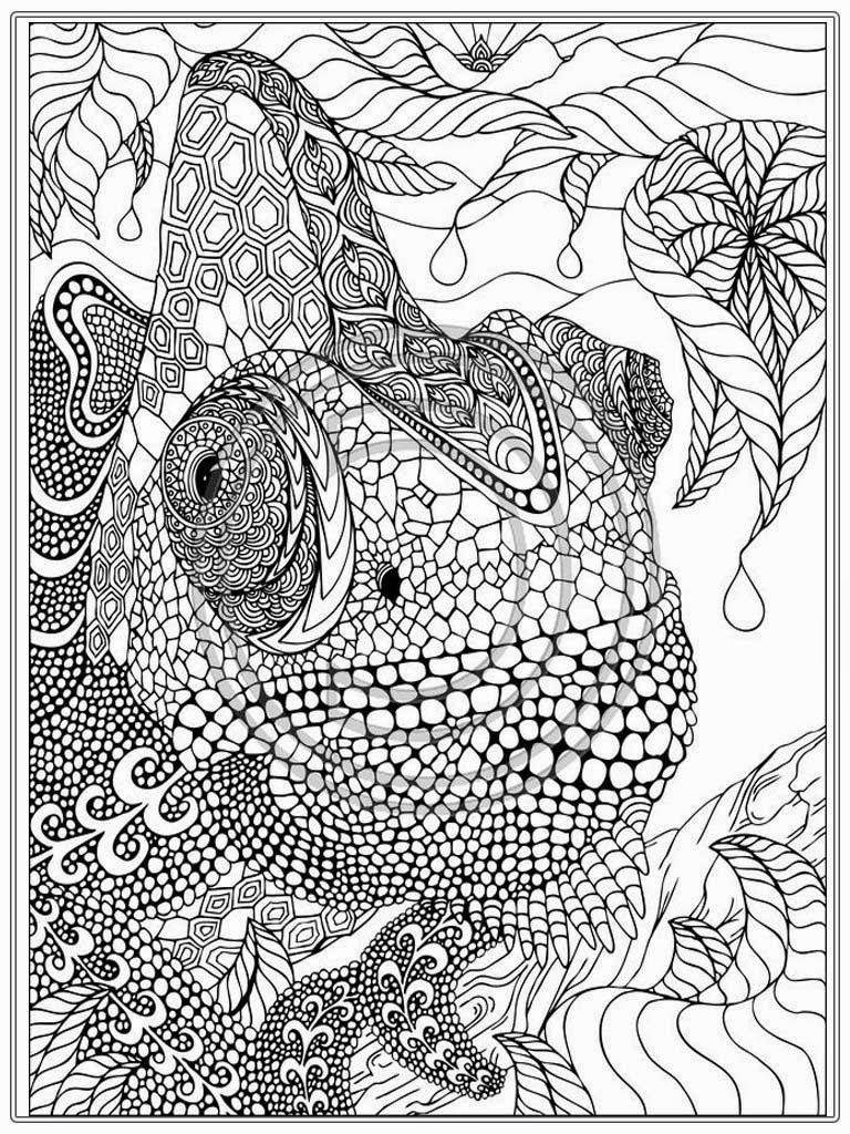 coloring sheets free online free coloring pages for adults only coloring pages coloring free sheets online