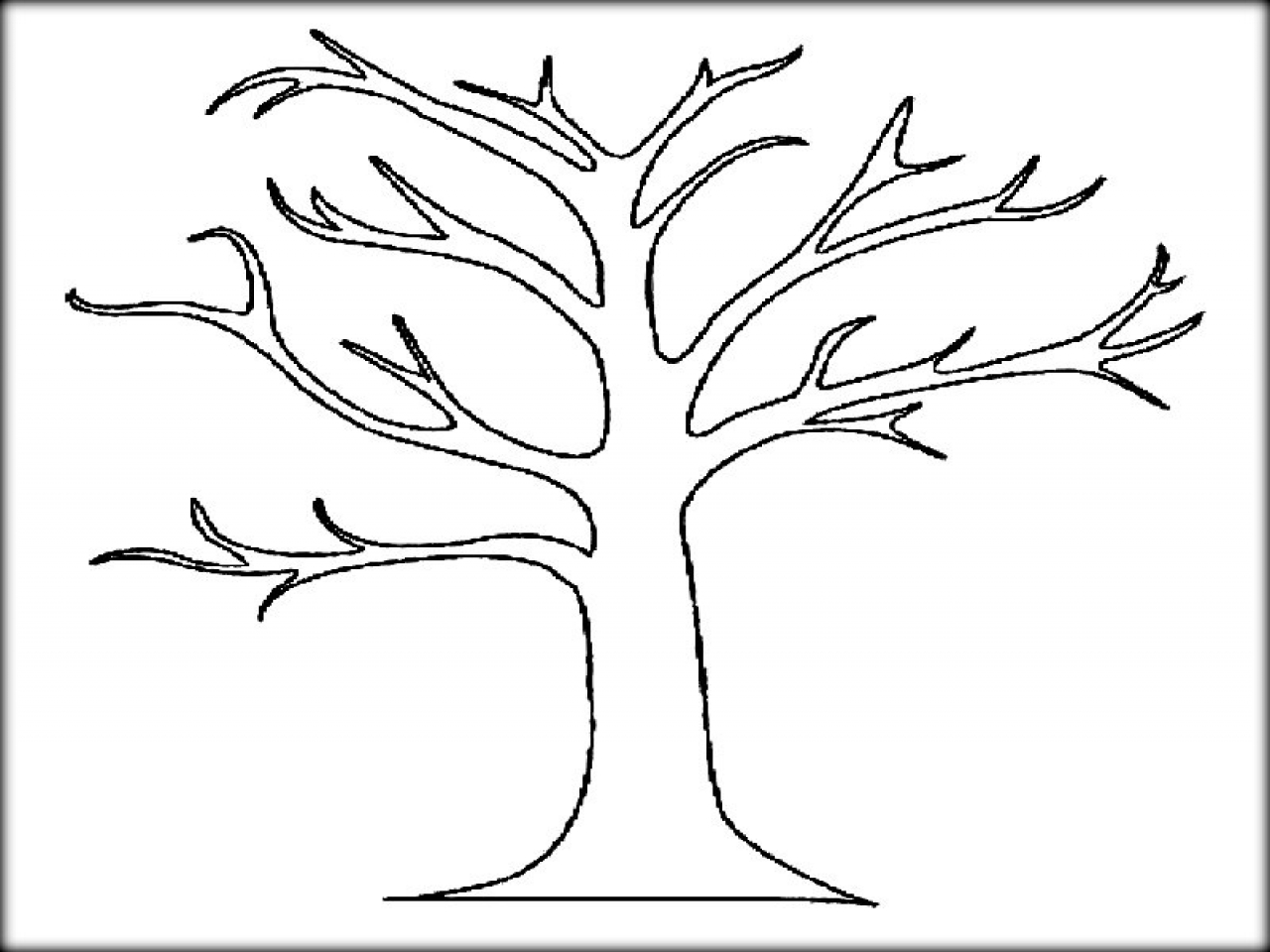 coloring trees autumn trees drawing at getdrawingscom free for coloring trees