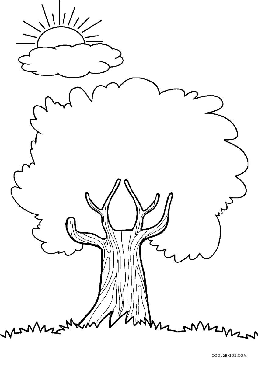 coloring trees free printable tree coloring pages for kids coloring trees