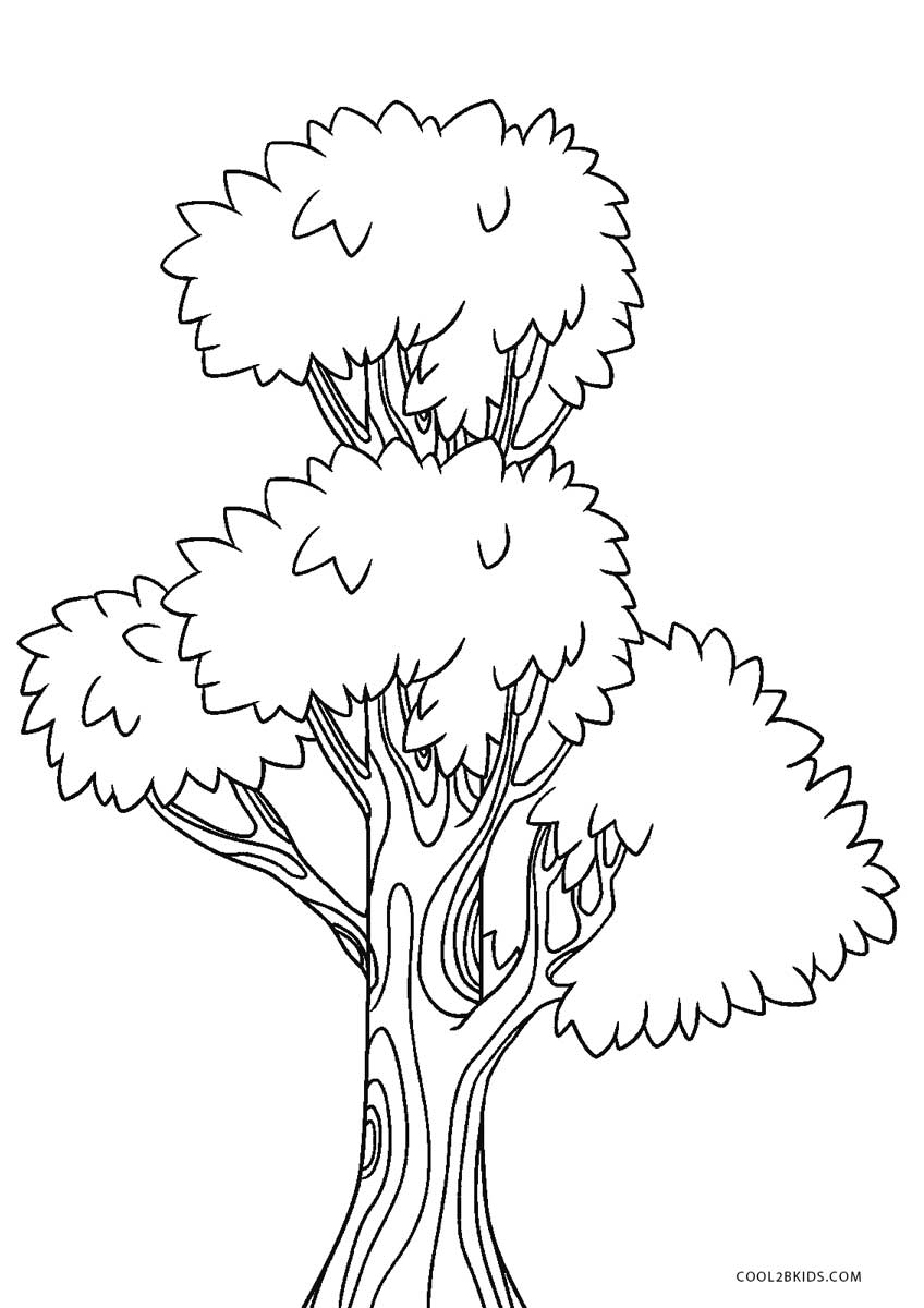 coloring trees free printable tree coloring pages for kids cool2bkids coloring trees