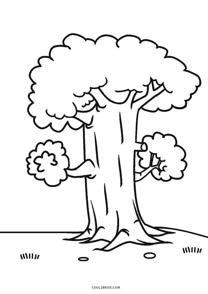 coloring trees free printable tree coloring pages for kids cool2bkids trees coloring 1 2