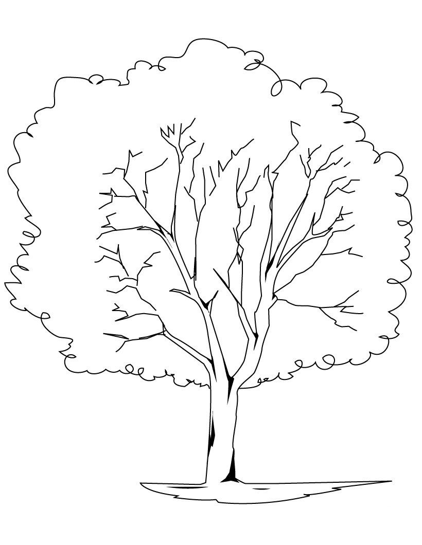 coloring trees free printable tree coloring pages for kids trees coloring 1 3