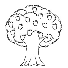 coloring trees top 25 tree coloring pages for your little ones trees coloring