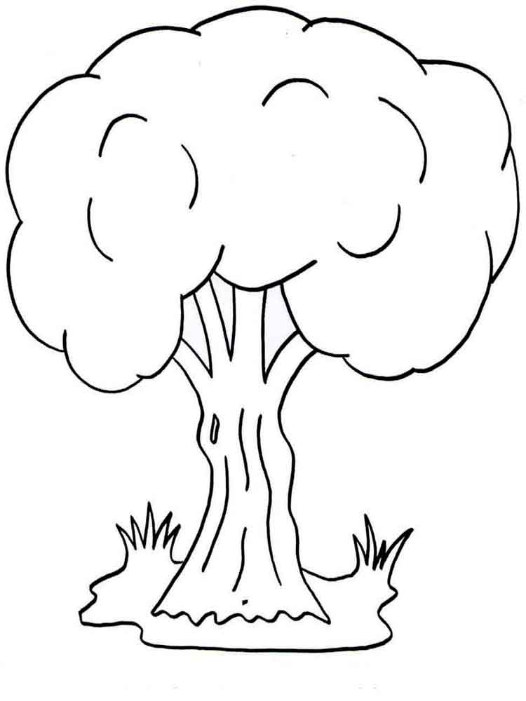 coloring trees trees coloring pages download and print trees coloring pages coloring trees