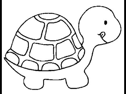 coloring turtles cartoon turtle coloring pages cartoon coloring pages coloring turtles