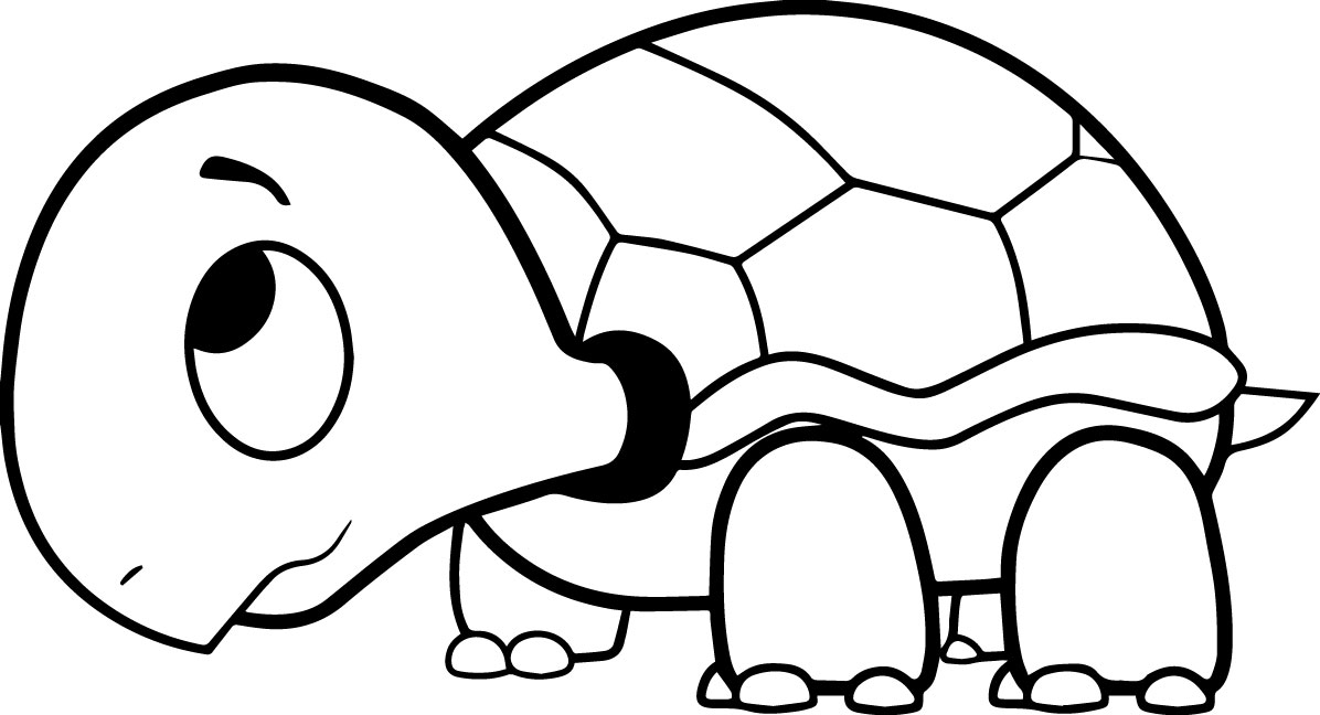 coloring turtles coloring pages free download on clipartmag turtles coloring