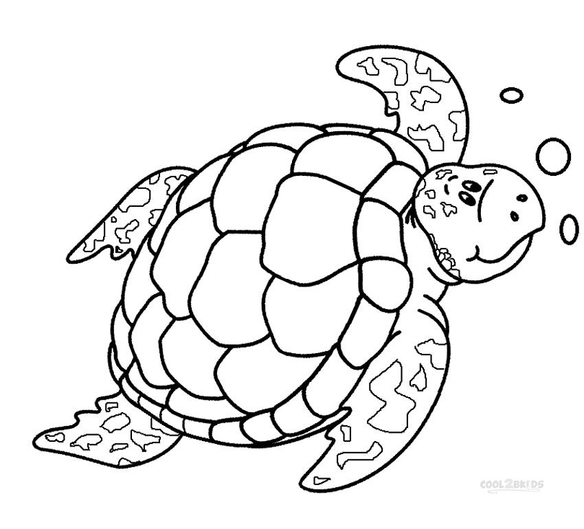 coloring turtles printable sea turtle coloring pages for kids cool2bkids coloring turtles