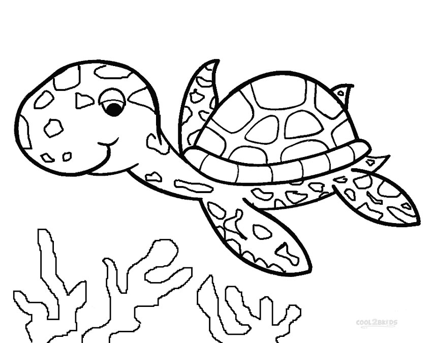 coloring turtles printable sea turtle coloring pages for kids cool2bkids turtles coloring