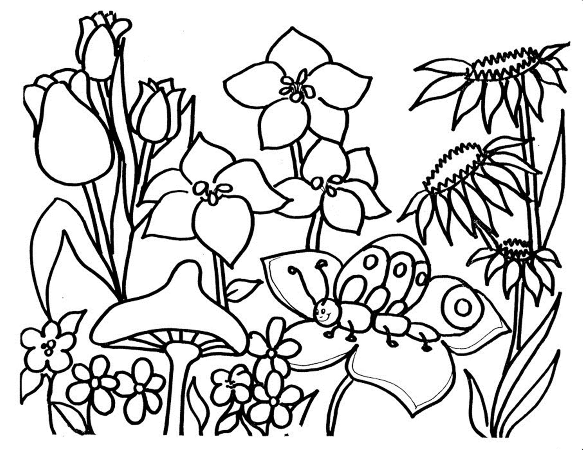 colouring flowers free printable flower coloring pages for kids best colouring flowers 1 1
