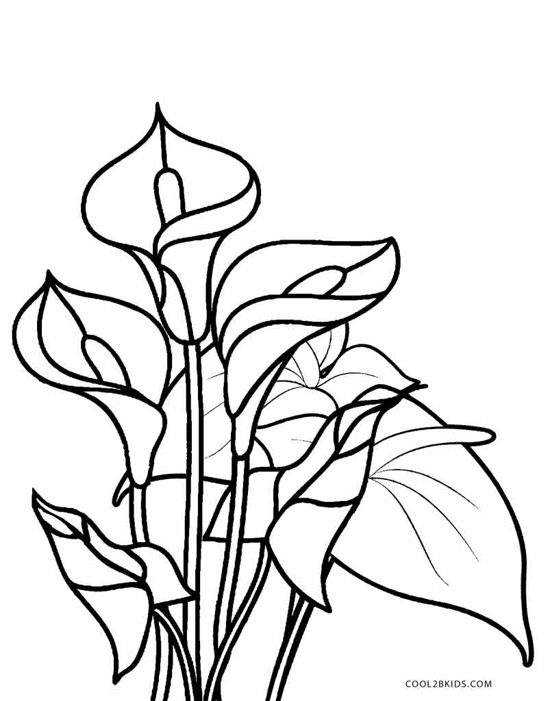 colouring flowers free printable flower coloring pages for kids best flowers colouring 1 3