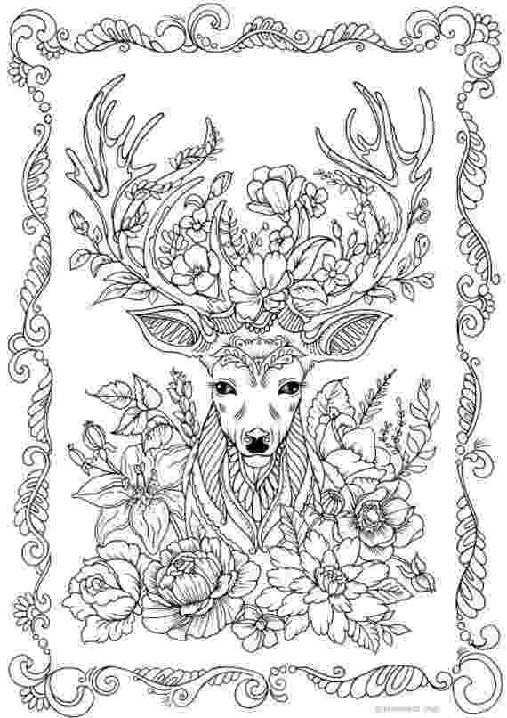 colouring for adults lize beekman amazoncom succulents portable adult coloring book 31 lize colouring for adults beekman