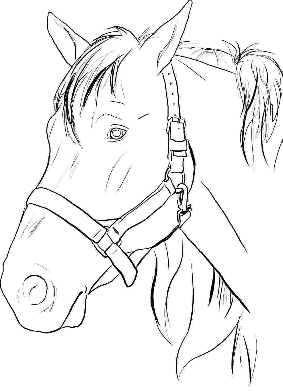 colouring horses free printable horseland coloring pages for kids 20185 colouring horses