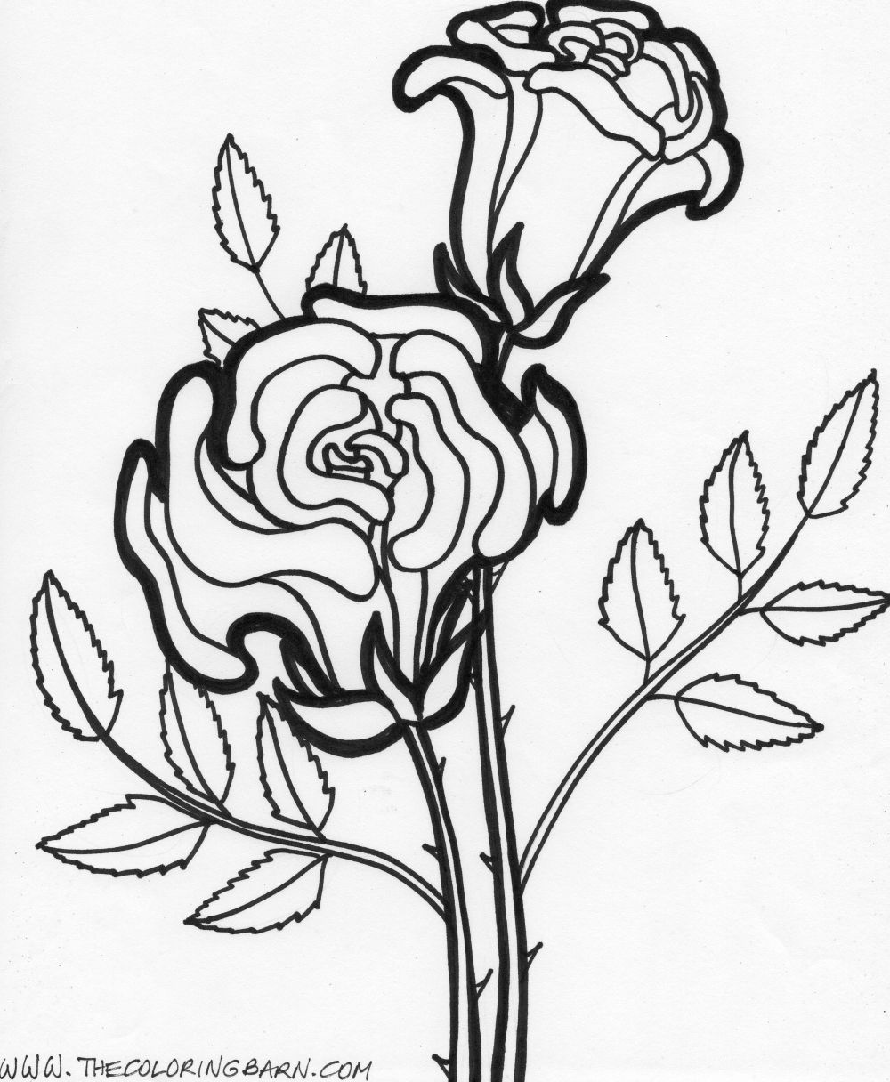 colouring page of flowers free printable flower coloring pages for kids cool2bkids of flowers page colouring