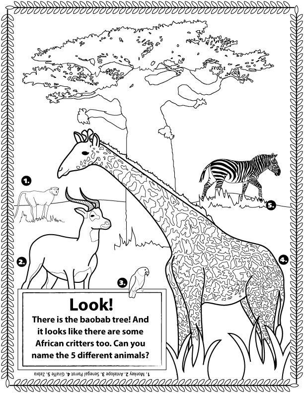 colouring pages big 5 animals african animals doubles as a coloring page african big colouring animals pages 5