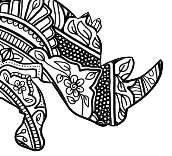 colouring pages big 5 animals african big five colouring pack by screwy lightbulb colouring 5 animals big pages
