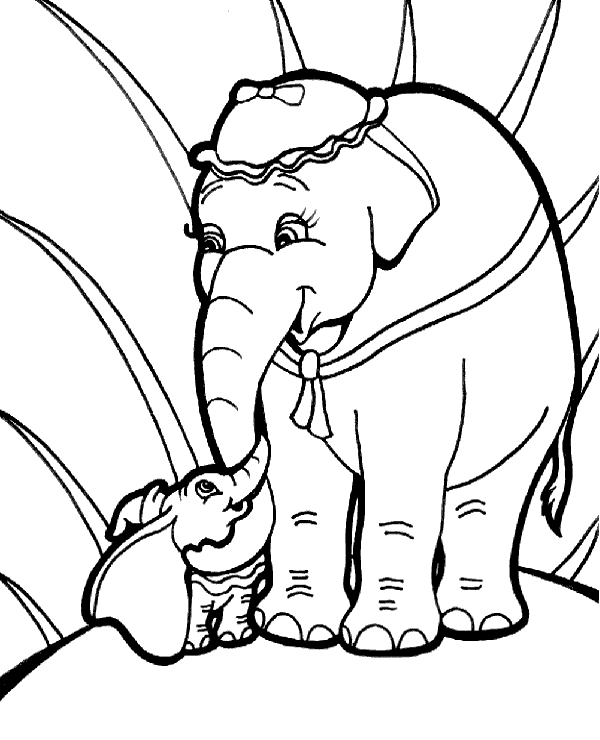 colouring pages big 5 animals big and small elephant on coloring sheet page colouring pages animals big 5