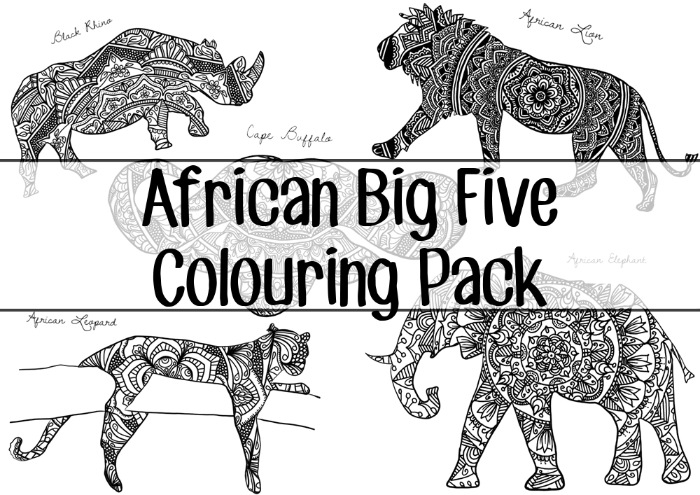 colouring pages big 5 animals big five images stock photos vectors shutterstock colouring big 5 pages animals