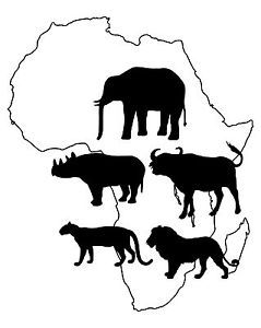 colouring pages big 5 animals silhouette of the big 5 google search back drops for 5 animals colouring pages big