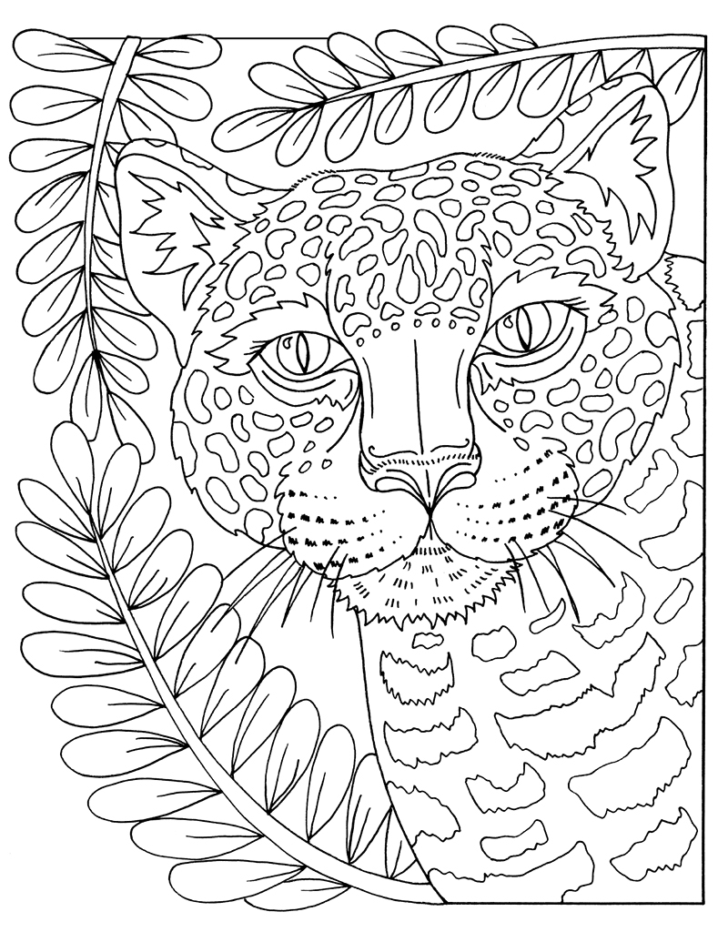 colouring pages big 5 animals zendoodle coloring big picture magnificent animals 5 animals pages colouring big