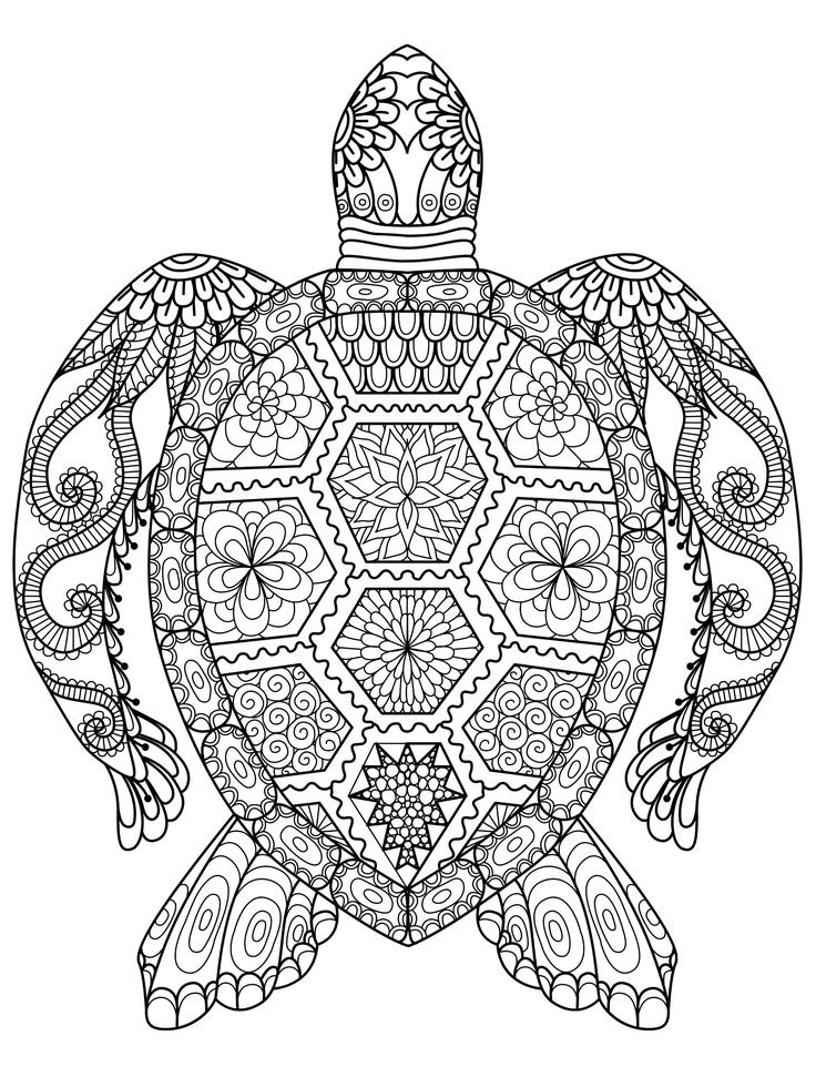 colouring pages for adults online free 50 printable adult coloring pages that will make you feel adults online free colouring for pages