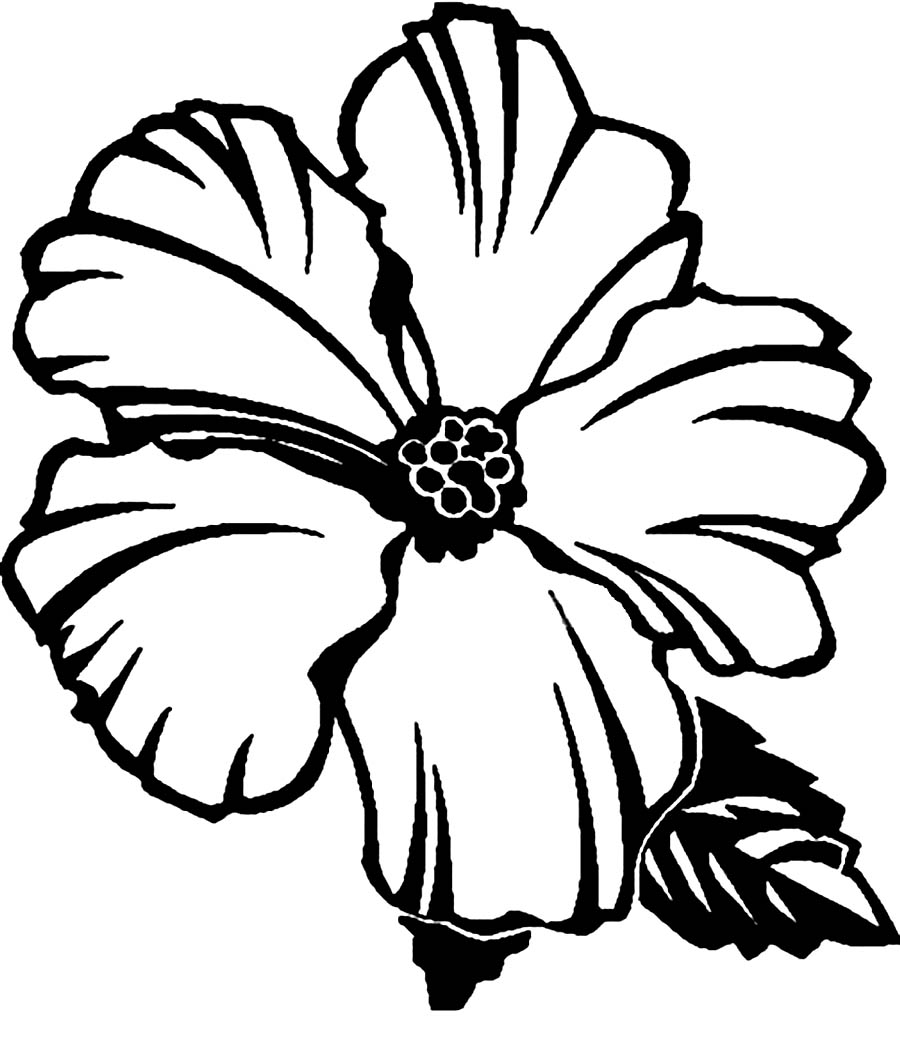 colouring pages hibiscus flower flowers pictures elegant free flower coloring pages for kids hibiscus pages flower colouring
