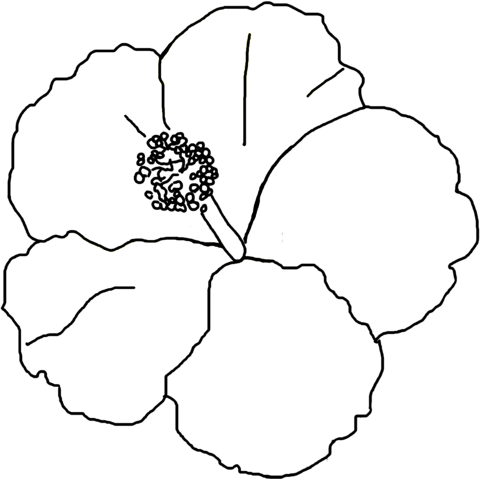 colouring pages hibiscus flower free printable hibiscus coloring pages for kids hibiscus pages colouring flower