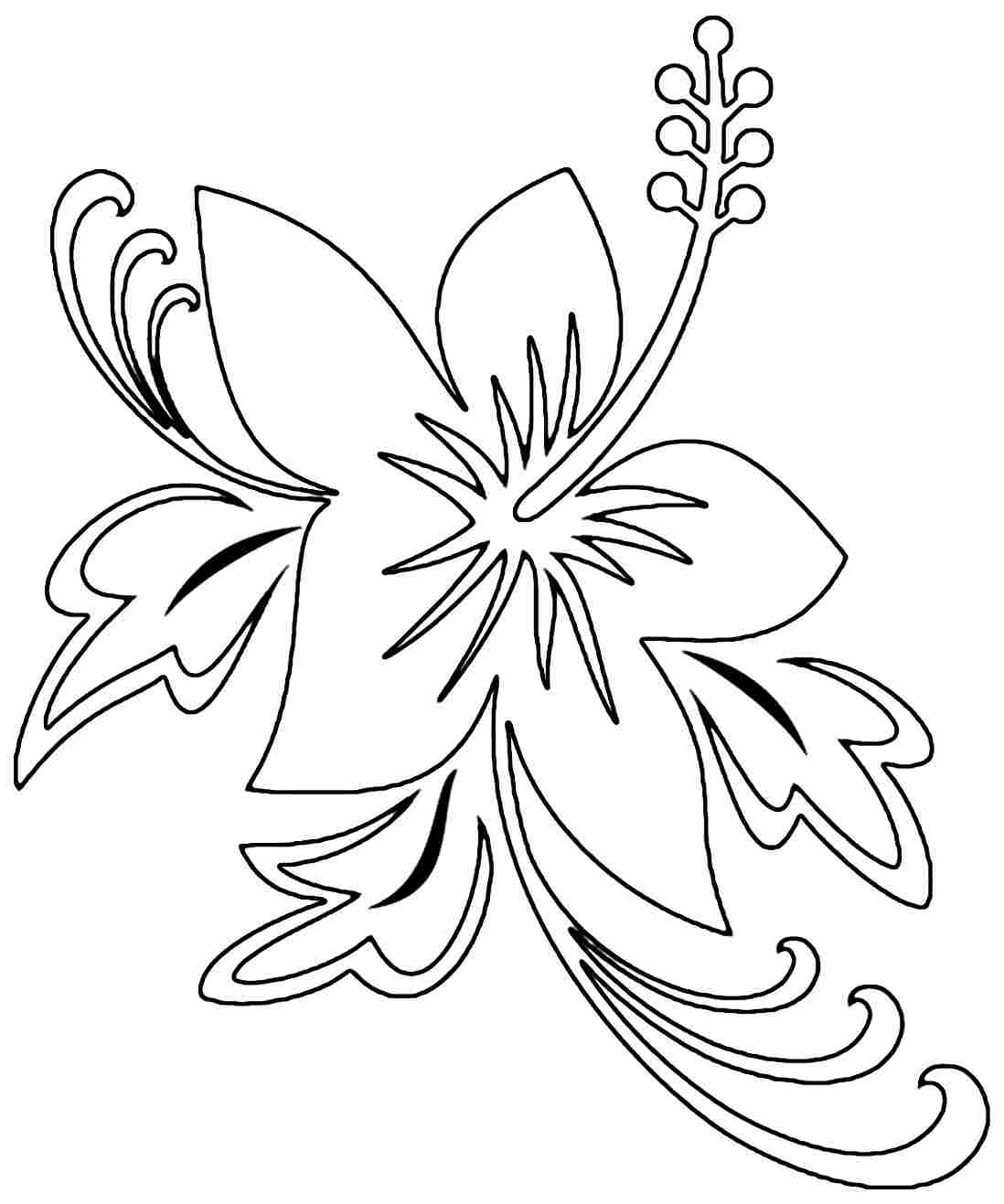 colouring pages hibiscus flower hibiscus plant drawing at getdrawingscom free for pages hibiscus colouring flower