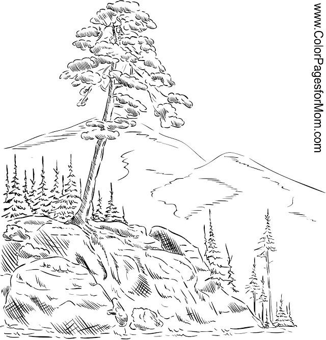 colouring pages landscapes landscape coloring page 55 landscapes colouring pages