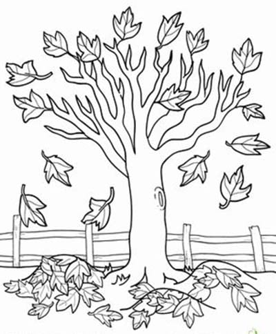 colouring pages of autumn trees autumn coloring pages colouring of pages trees autumn
