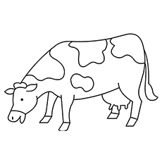 colouring pages of cow free printable cow coloring pages for kids cow of pages colouring 1 1