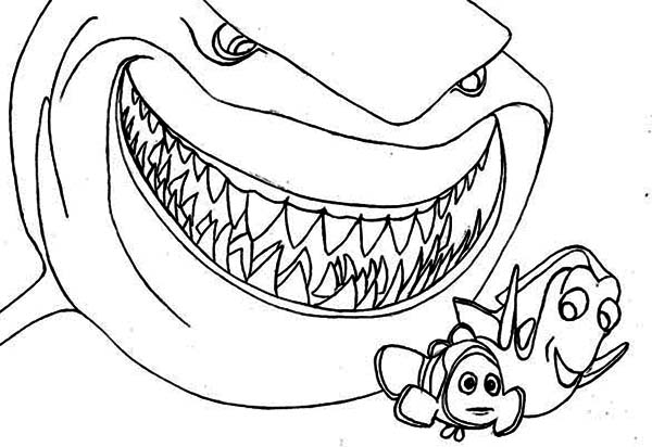 colouring pages of sharks free printable shark coloring pages for kids sharks pages colouring of
