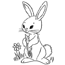 colouring pages rabbit top 10 free printable rabbit coloring pages online rabbit colouring pages