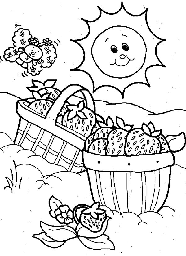 colouring pages to print free nautical coloring pages to download and print for free free print pages colouring to