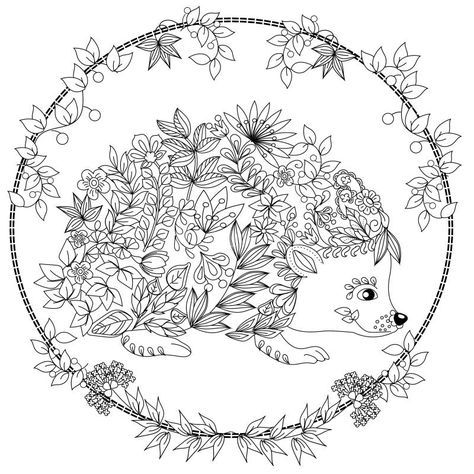 colouring picture hedgehog ΠΑΙΔΙΚΑ ΧΑΜΟΓΕΛΑ Σκαντζόχοιρος hedgehog colouring picture