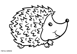 colouring picture hedgehog hedgehog coloring pages printable for free portale bambini hedgehog colouring picture