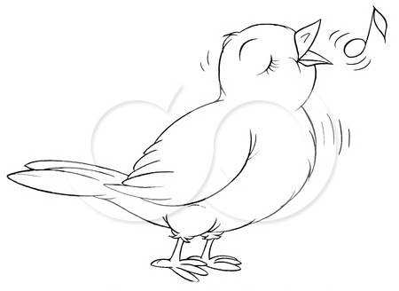 colouring pictures of birds birds coloring pages of birds colouring pictures