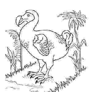 colouring pictures of extinct animals 10 extinct animal species educationcom animals colouring extinct of pictures