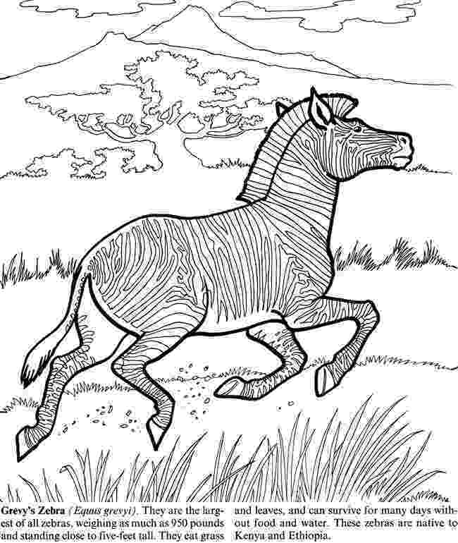 colouring pictures of extinct animals division of forestry and wildlife education colouring extinct animals of pictures